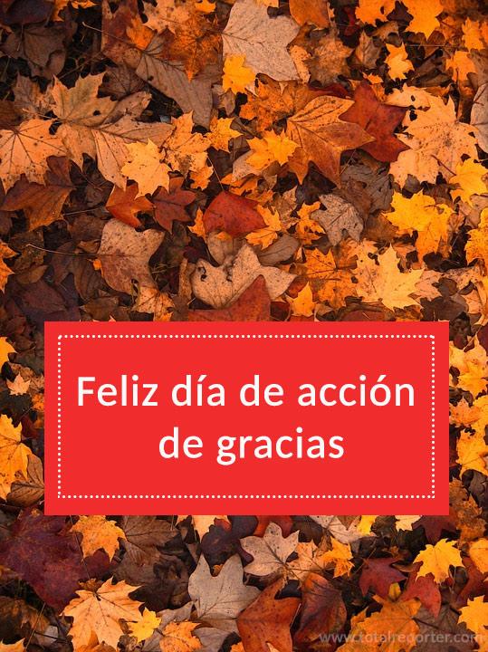 Imágenes del Día de Acción de Gracias