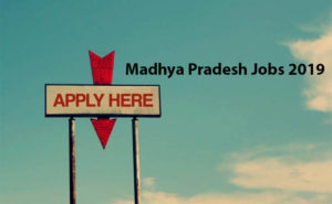 Madhya Pradesh Jobs 2019 Apply Online, Check Latest Govt Jobs after 12th Class