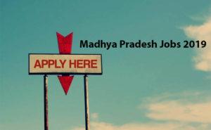 Madhya Pradesh Jobs 2019 Apply Online, Check Latest Govt Jobs after 12th Class