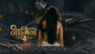 naagin 4 cast crew telecast timings story plot